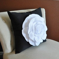 White Rose on Black Pillows