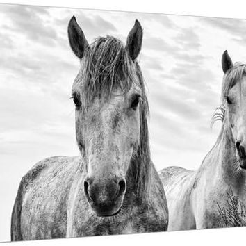 White Horses, Camargue, France Premium Photographic Print by Nadia Isakova at Art.com