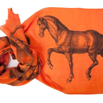 Extra Long Wool Scarf Equus