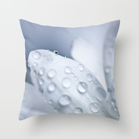 White Daisy Pillow Cover White Pillow Covers Shabby Chic Home Decor Flower Photo Pillow Cotton Decorative Pillow Cover