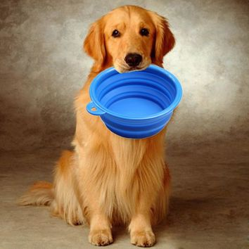 Lightweight Folding Bowl For Dogs