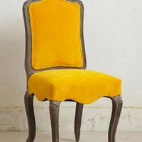 Velvet Beatrix Dining Chair by Anthropologie in Yellow Size: One Size Furniture