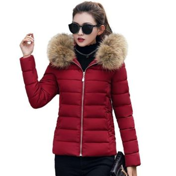 Womens Hooded Slim Fit Winter Zip Up Short Coat