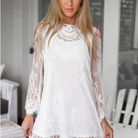 Sexy Lace Mesh Long Sleeve Dress