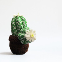 Little Round Cactus with white and yellow felt flowers