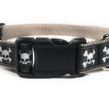 Skull & Bones  Halloween Dog Collar