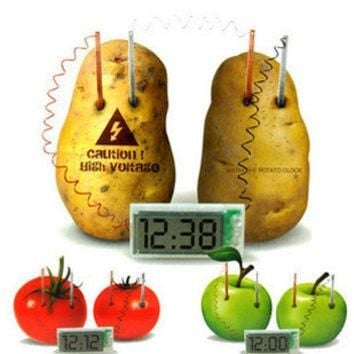 New Energy toys Potato Clock Green Science Electro chemical Cells Electrical energy Co