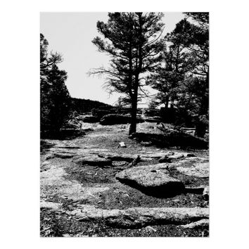 Trees Landscape Black and White Ink Art Poster