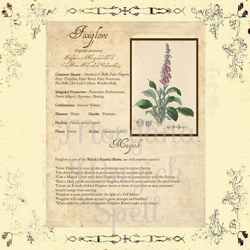 MAGICK HERB FOXGLOVE, Digital Download,  Book of Shadows Page, Grimoire, Scrapbook, Spells, White Magick, Wicca, Witchcraft, Herb Magic