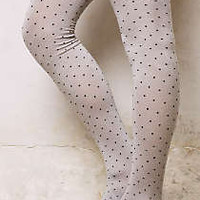 Pindot Tights