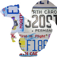 North Carolina License Plate Squirrel
