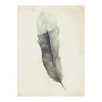 Charcoal Feather 2 Wall Art