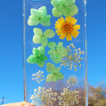 Hand Selected Natural Dried Pressed Flowers Handmade on iPhone 6 Crystal Clear Case: Yellow Daisy with Clover