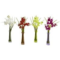 Mini Phal w/Colored Vase (Set of 4)