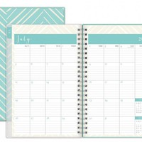 July 2015 - June 2016 Susy Jack Herringbone Clear Cover Weekly/Monthly Planner 5x8