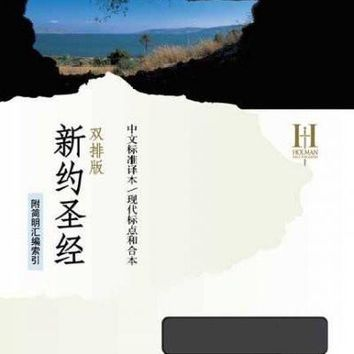 Holy Bible (CHINESE): Chinese Standard Bible/ Chinese Union Version With Modern Punctuation, Black, Bonded Leather, Parallel Edition, New Testament