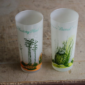 Lot Of 2 1959 Blakely Oil And Gas Giveaways Frosted Ice Tea Glasses With Arizona Cactus on each Libbey Glass Company