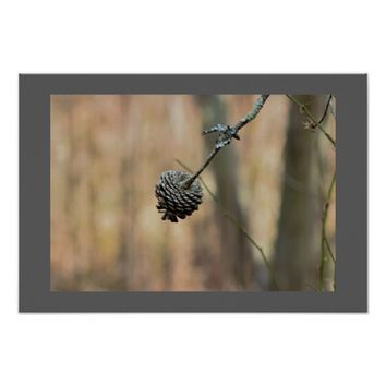 Small Pinecone Photo Poster