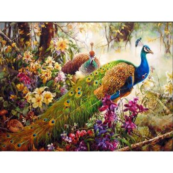 Peacock DIY Oil Painting By Numbers Kit- DIY Art Home decor