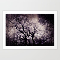 winter trees Art Print by vanessagf