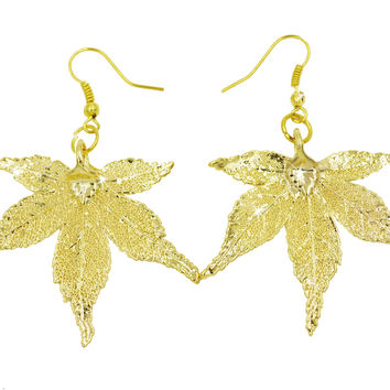 Real Leaf Hook Drop EARRINGS Japanese Maple Dipped in 24K Yellow Gold Genuine Leaf