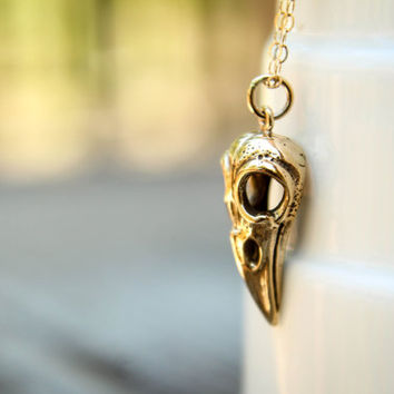 Bird Skull Necklace, Available in Silver and Bronze