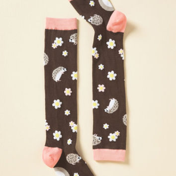 Spiny Beautiful Things Socks