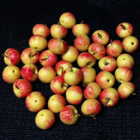 20 Miniature Gara Apples Fruit Clay Polymer Fruits Supplies Cute Little Tiny Small Dollhouse Apple Red Yellow Hand Made Food Jewelry Beads