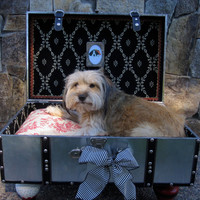 Dog Bed Suitcase - Cat - Toile - Silver