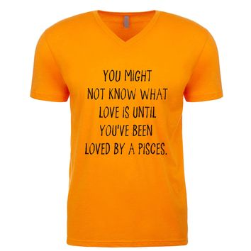 You might not know what love is until you've been loved by a Pisces. Men's V Neck
