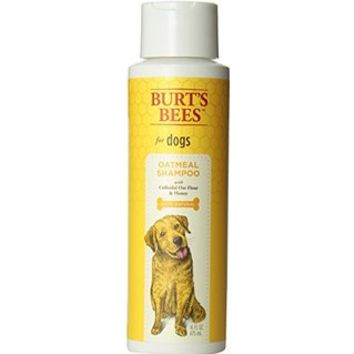 Burts Bee Oatmeal Conditioner, 10-Ounce