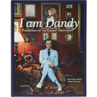 I Am Dandy, The Return Of The Elegant Gentleman
