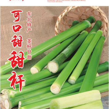 1Original Packs 20g Vegetable and fruits seeds Sugar cane seeds rich in sugar sugarcane seed Bonsai plants Seeds for home&garden