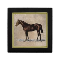 Brown Horse Jewelry Box