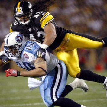 6641 Troy Polamalu Pittsburgh Steelers Sport - Art Silk Cloth Poster-Wall Sticker Art Poster For Home Decor Silk Canvas Painting