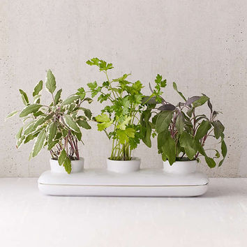 Duo Herb Planter | Urban Outfitters