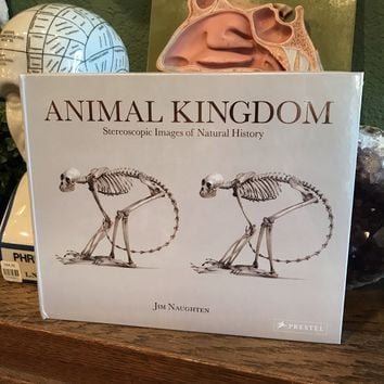 Animal Kingdom: Stereoscopic Images of Natural History by Jim Naughten