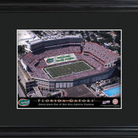 College Stadium Print with Wood Frame - Florida