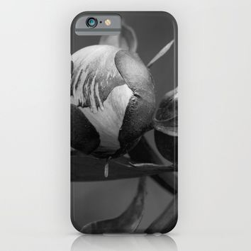 Unbloomed Flowers iPhone & iPod Case by Cinema4design