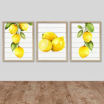 WATERCOLOR LEMON Wall Art, Kitchen Lemon CANVAS or Prints, Lemon Wall Decor, Watercolor Lemon Pictures, Vintage Lemon Artwork Set of 3