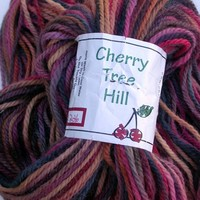 Cherry Tree Hill Yarn Alpaca Bulky, Hand Painted Cabin Fever,370 yds