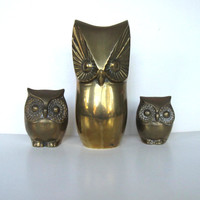 Lot of 3 Vintage Brass Owls, Owl Bank,  Home Decor, Retro Collectible, gift idea
