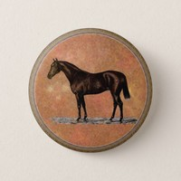 Brown Horse Pinback Button