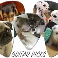 Cute Puppies (Dogs) Full Colour Premium Guitar Picks x 5 Medium 0.71