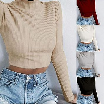 Tight Turtleneck Crop Striped Sweater