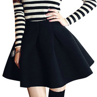 Zipper Closure High Waist Pleated Skirt
