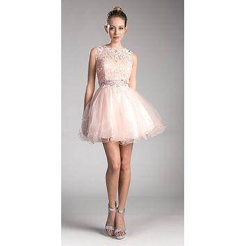 Blush Lace Beaded Short Homecoming Dress Sleeveless
