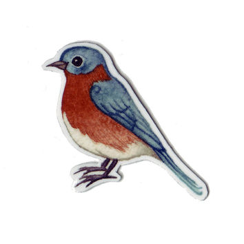 Eastern Bluebird Bird Magnet