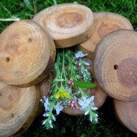 Cherry Tree Branch Buttons Perfect for by TimberWoodsWares on Etsy