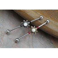 Silver or Gold Sun Industrial Barbell